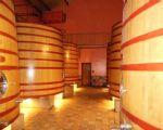 Imponerende houten vaten met Rioja (geen Rodenbach hé ;-) )